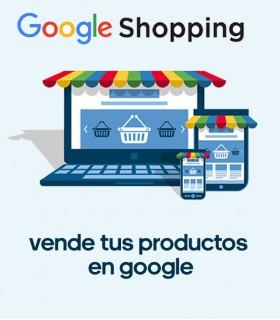 Google Shopping, Conexión y campañas ADS
