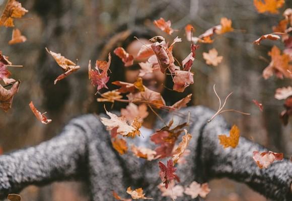 Diseña tu campaña de marketing para otoño